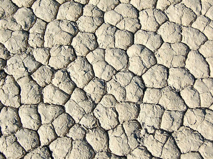 Detail of a dry lake bed Owens Valley CA photo