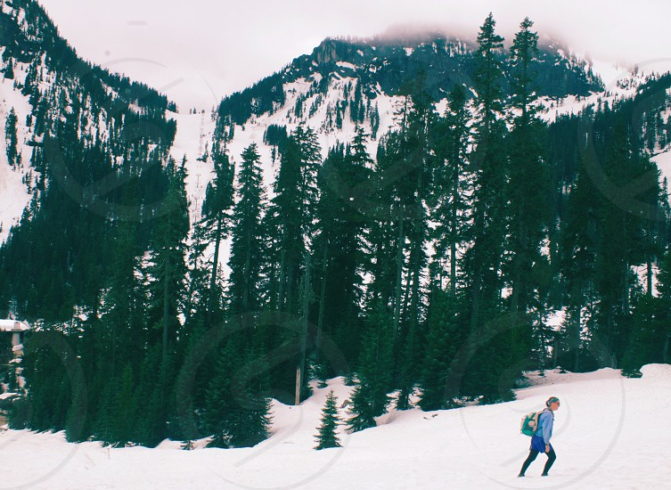 Snow hiking cold winter snowshoe snowing chilly white stormy storm whitecaps trees small person action moving backpack outdoor outdoors wilderness travel outside photo