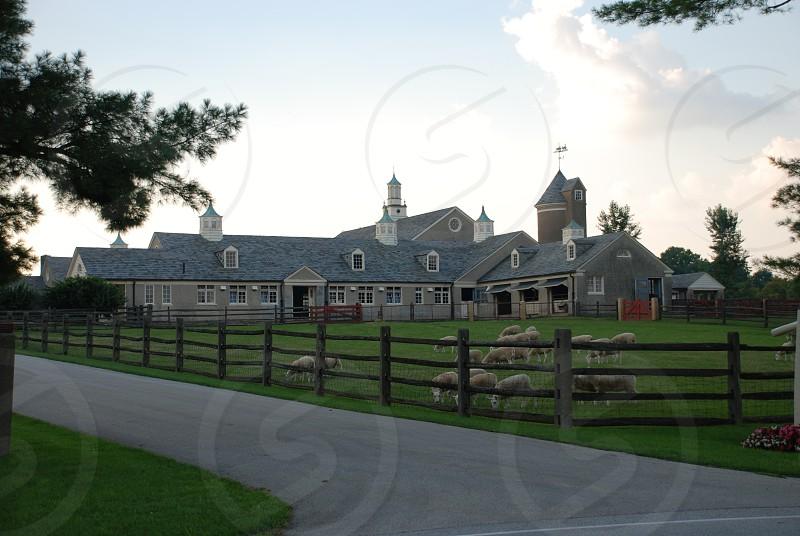 Sheep Barn near Norriston PA photo