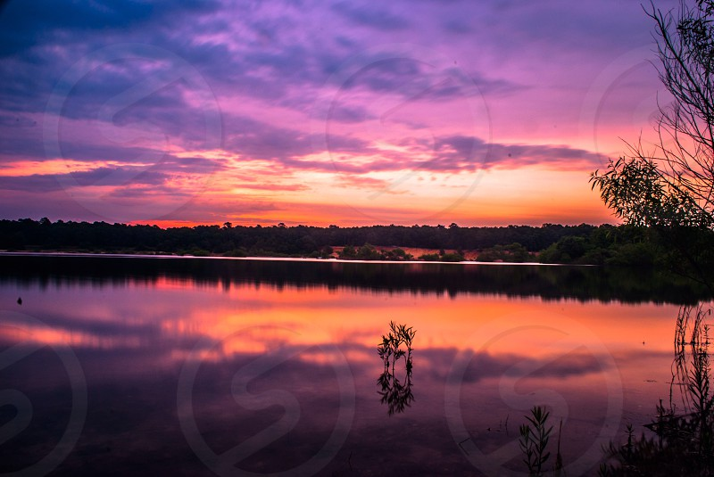 lake overlooking forest trees under sunset sky photo
