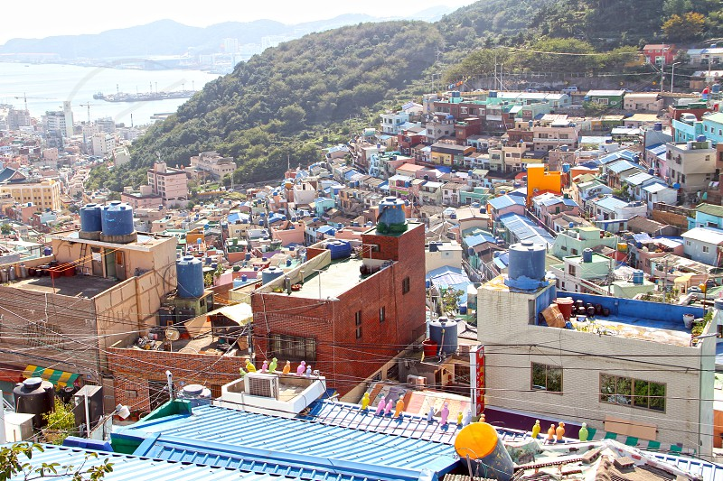 Gamcheon culture village Busan Asia. photo