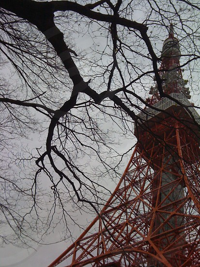 Tokyo tower on a cloudy day photo