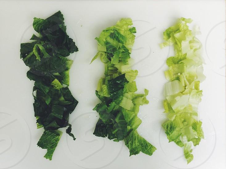 green chopped leaf vegetable photo