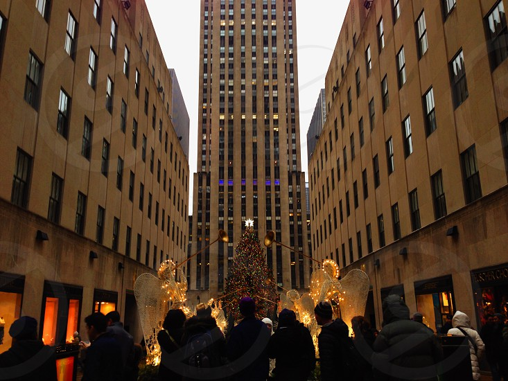 view of rockefeller center christmas tree photo