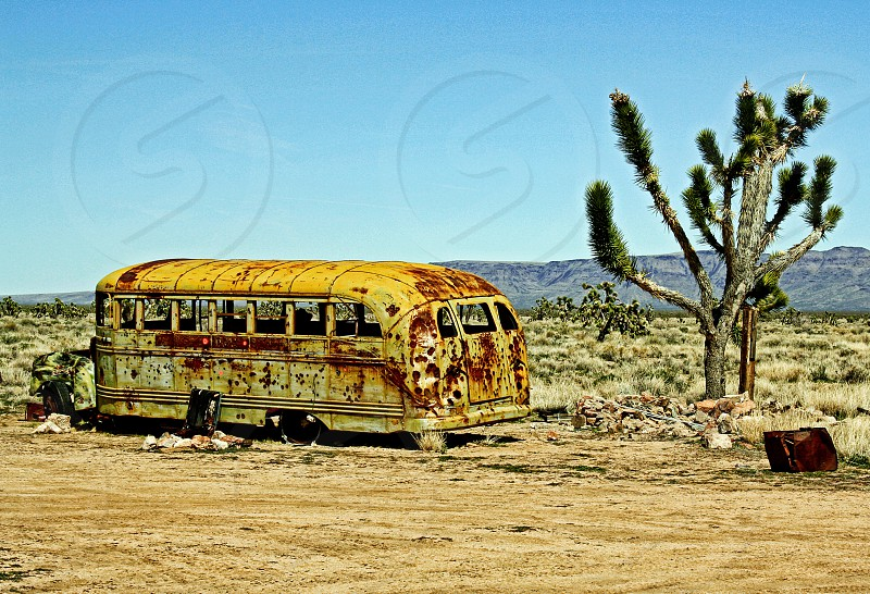Rusted school bus shot with bullet holes is abandoned in the desert photo