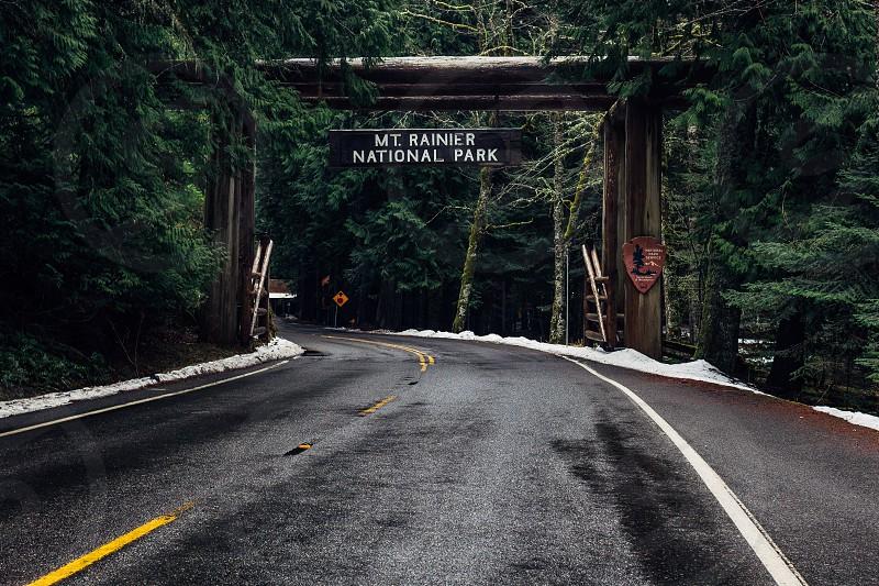 Mt. Rainier National Park pathway photo