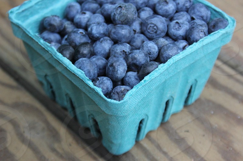 Bluest of Berries photo