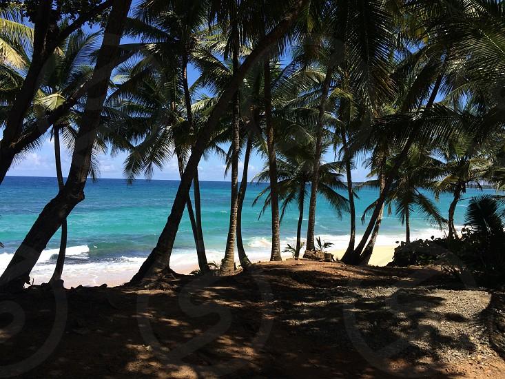 Manati Puerto Rico  hidden beach  photo