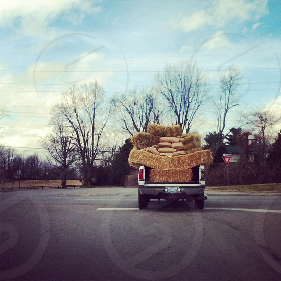 Lexington Kentucky Home Truck Hay Feed Horse pasture Hard work Blue sky photo
