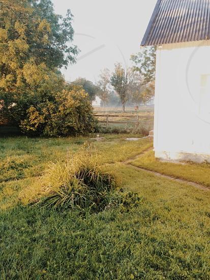 Garden autumn photo