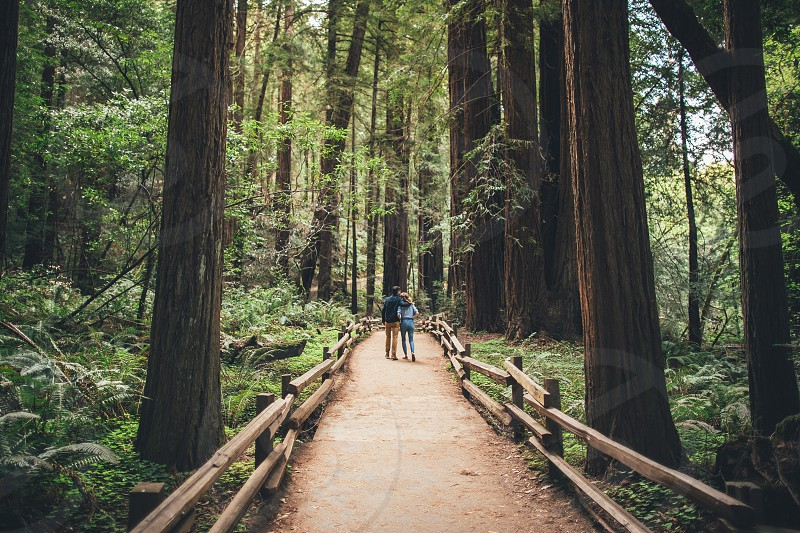 2 couple walking over a bridge on a forest photo