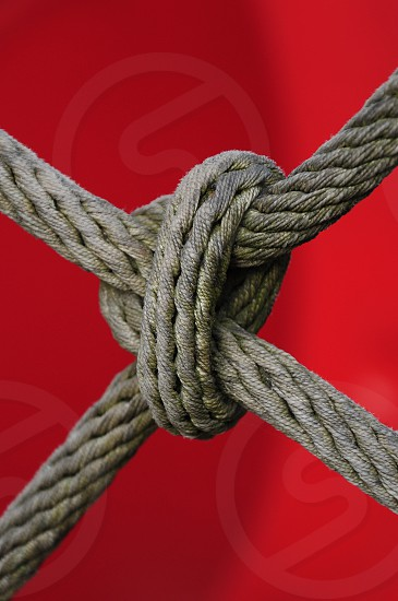 thick rope in knot photo