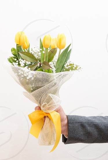 Hand Holding A Bouquet Of Yellow Flowers Tulips Isolated On White Background photo