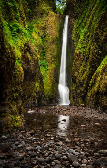 Oneonta Falls in the Columbia River Gourge photo