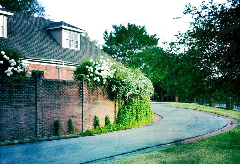 road neighborhood photo
