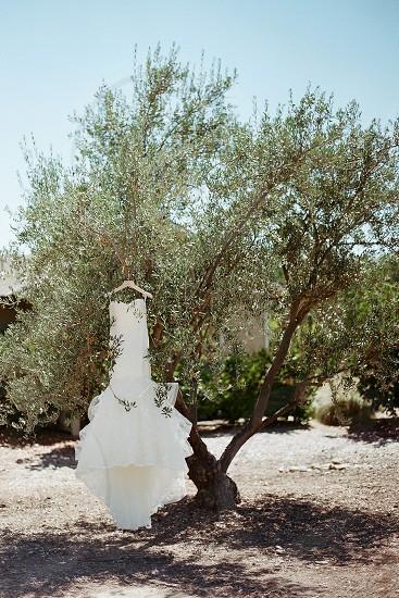 wedding dress weddings simplicity olive tree photo