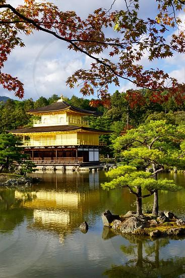 The Golden Pavilion. Kyoto. Japan.  photo