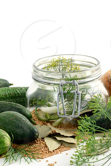 homemade cucumbers in jar glass with herbs like dill and onions. photo