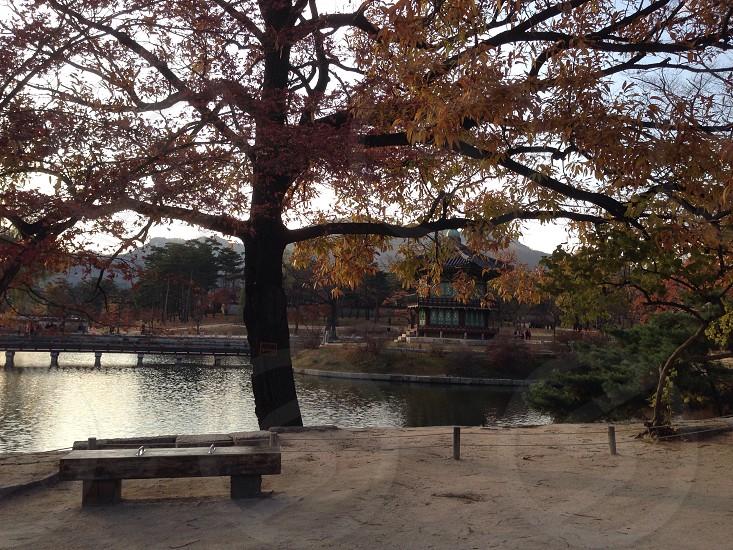 Korea photo