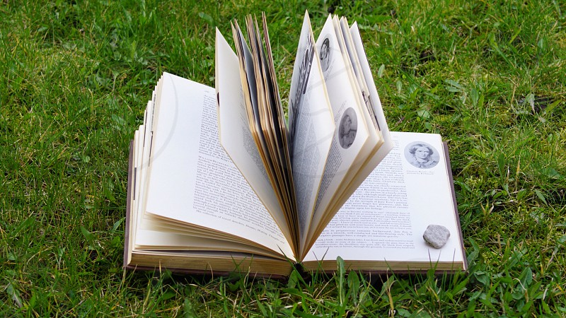 gray rock on an open book on grass field photo