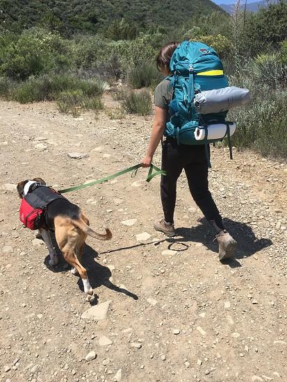 Hike camp backpack dog trail nature woman  photo