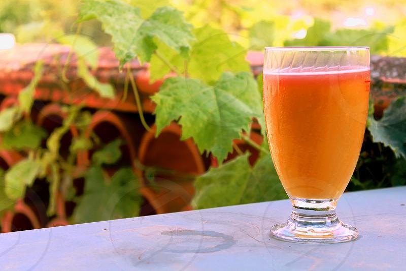 orange liquid in clear drinking glass photo
