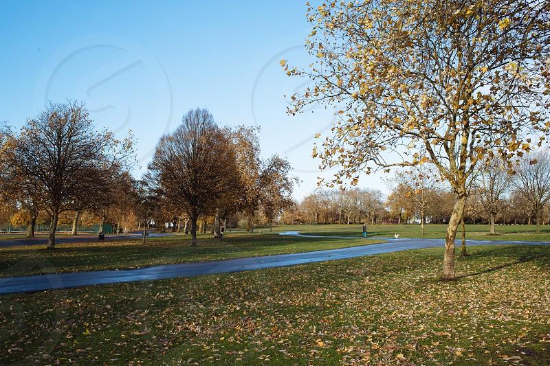 Finsbury Park London photo