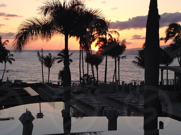 Maui sunset photo