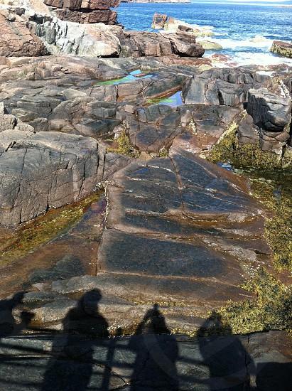 Arcadia Maine photo