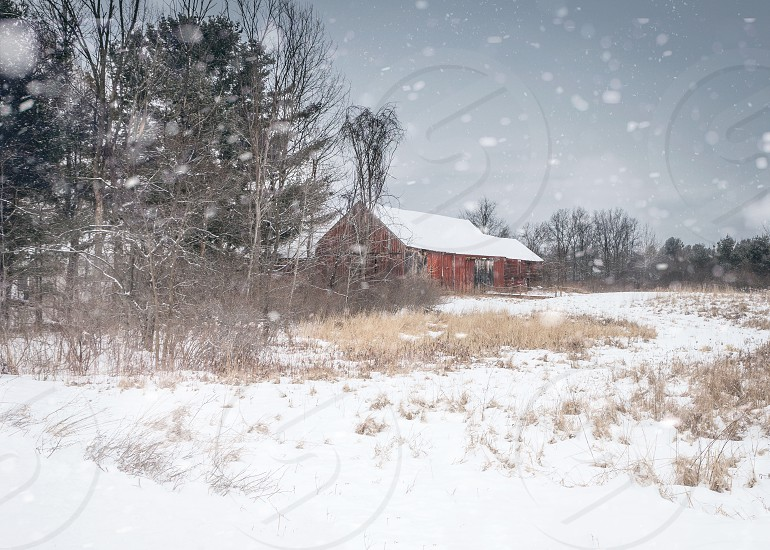 Red barn in snowy winter landscape  photo