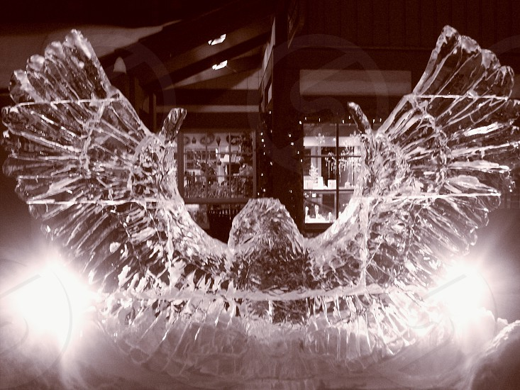 Eagle ice frozen sculpture  photo