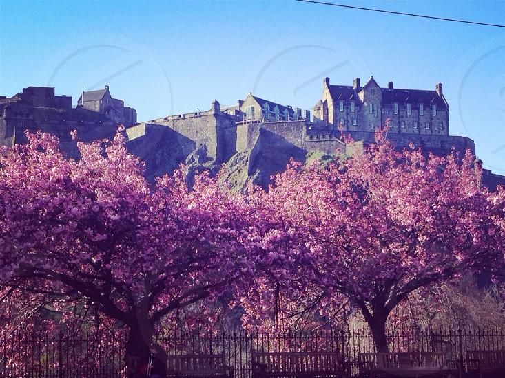 Easter Sunday Edinburgh Scotland photo