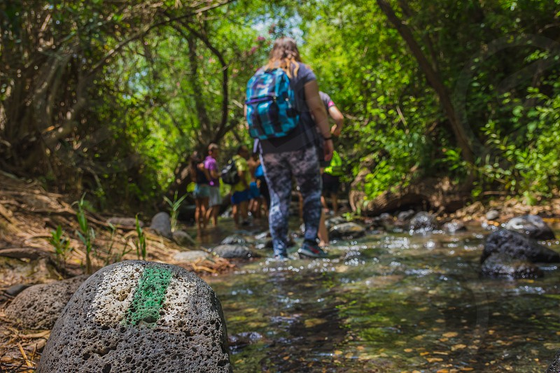 Group of backpackers fording stream in the forest. Green and white hiking trail marker painted on a stone. photo