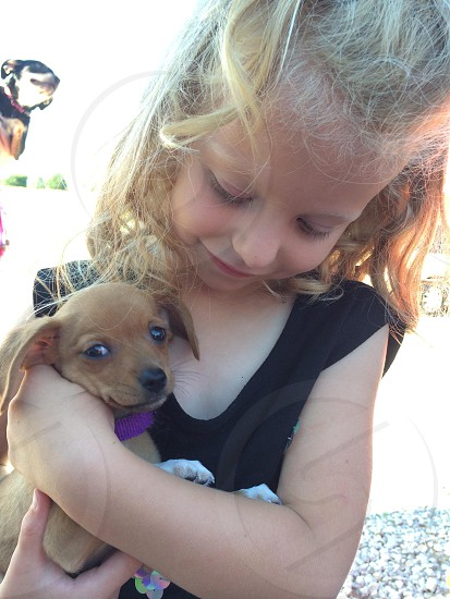 girl in black shirt hugging brown puppy photo