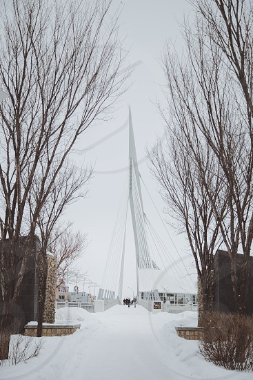 Esplanade Riel - Walking Bridge - The Forks Winnipeg photo