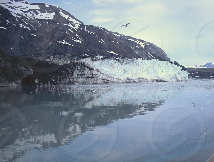 Reasons to travel Alaska water reflections pristine glaciers majestic bird soaring  environmental photo