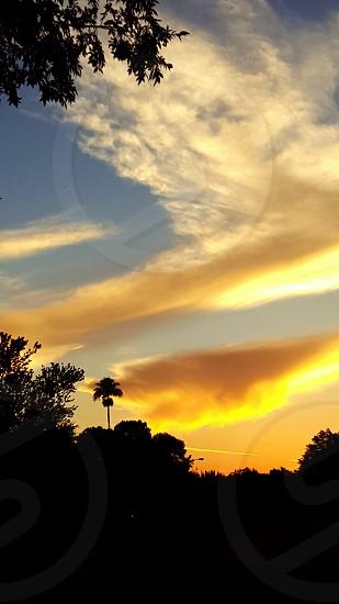 sunset in orlando fl photo