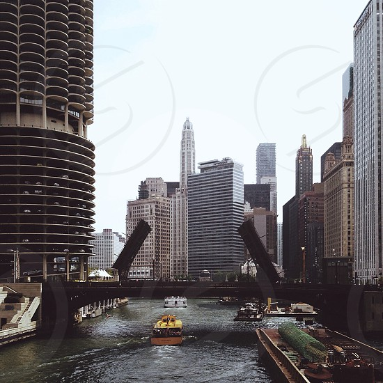yellow boat sailing under the bridge photo