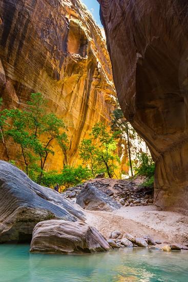 Zion National Park Utah Nature Narrows canyon Virgin River tall rock walls water trees desert mountains photo