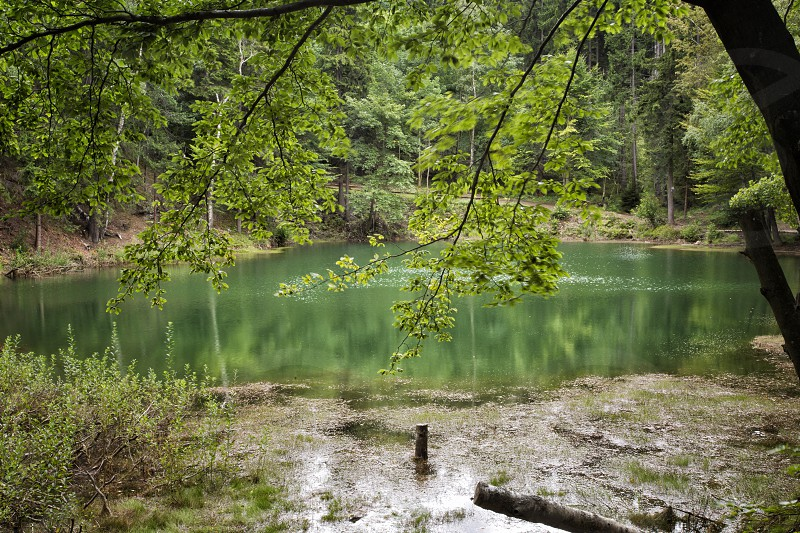 activities adventure arc attraction beautiful beauty colorful colors destruction earth environment europe forest forrest geology geotouristic grass green island lake mine moraine morena nature park path pit poland pond quarry reclamation season tree vibrant water woods azure emerald lakelet photo