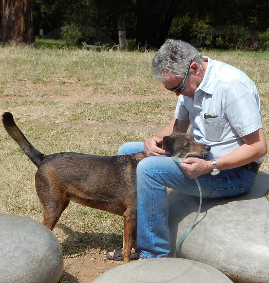a senior man taking a rest from walking his dog in the park on a sunny day sitting on a rock with the head of his dog resting on his knee and being stroked in moment of love and togetherness photo