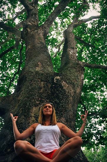 woman meditating on the tree photo