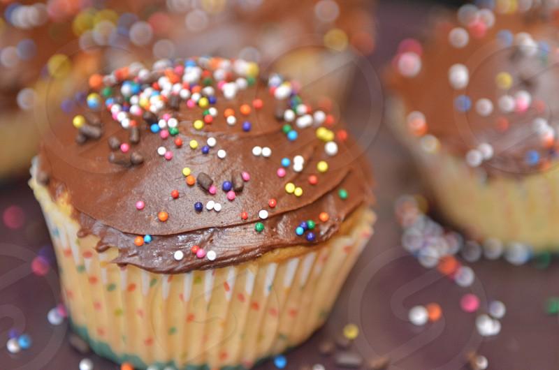 Chocolate frosting vanilla cupcake multi-colored sprinkles cupcakes bokeh treats sweets dessert birthday party celebration photo