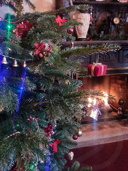 green Christmas tree with red ornaments and lighted string lights near lit fireplace photo