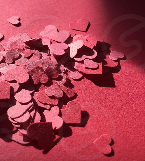 pink paper heart confetti on pink construction paper photo