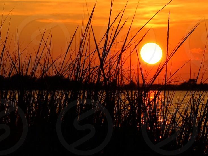 lake on a sunset view photo