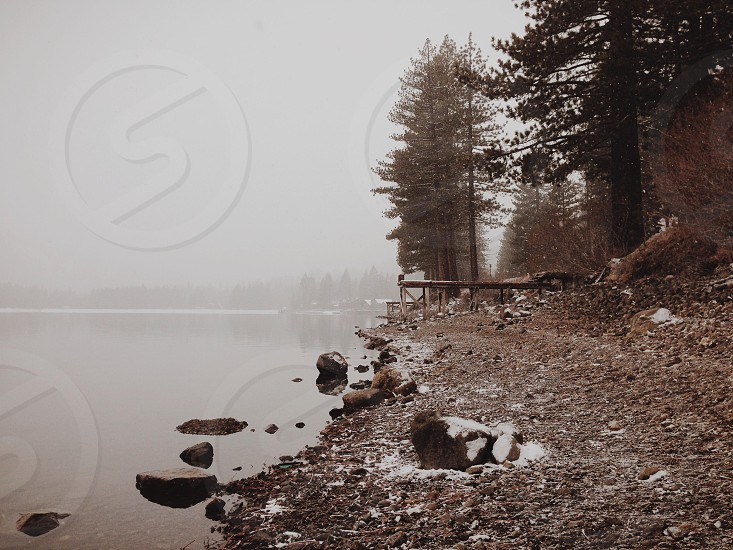 lake view photograph  photo