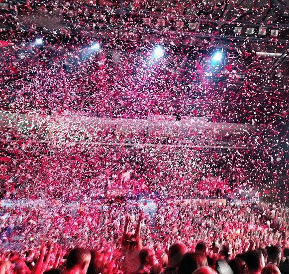 Confetti.  photo
