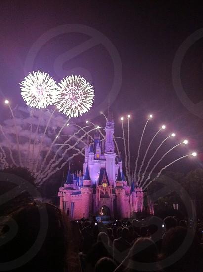 Disney Castle Fireworks photo