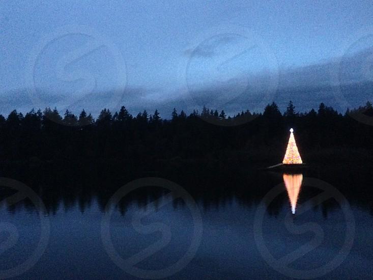 Christmas darkness light tree.. photo